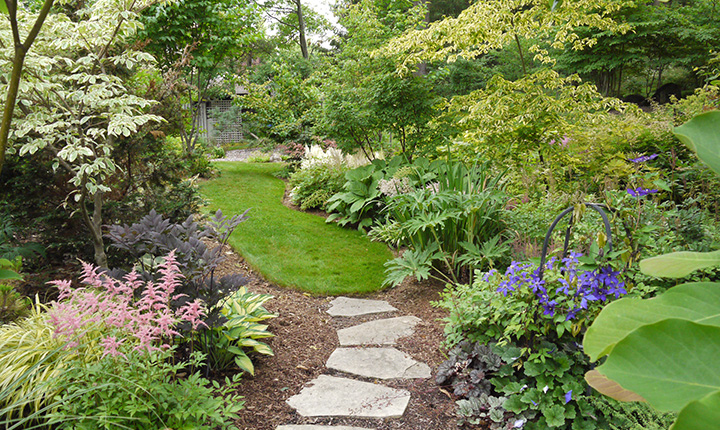 A backyard garden with a stone path running through it.