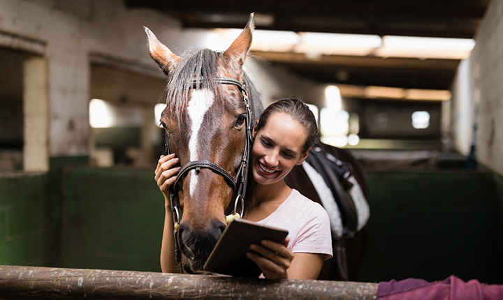 Girl holding horses' bit while looking at tablet computer in barn