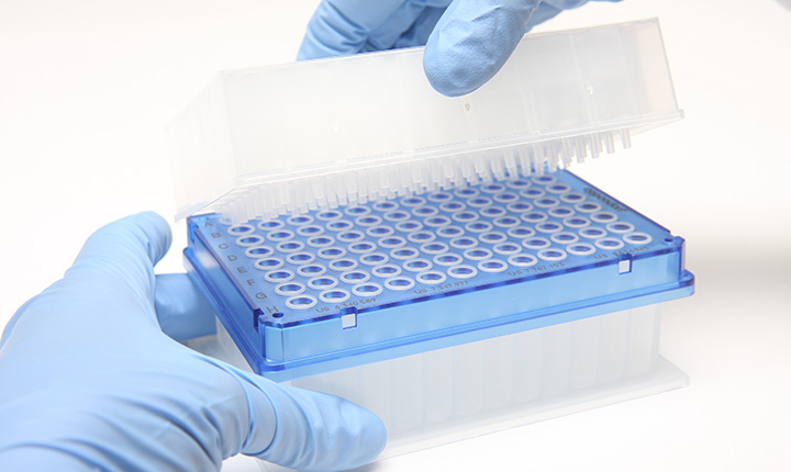 gloves hands holding dna analysis kit