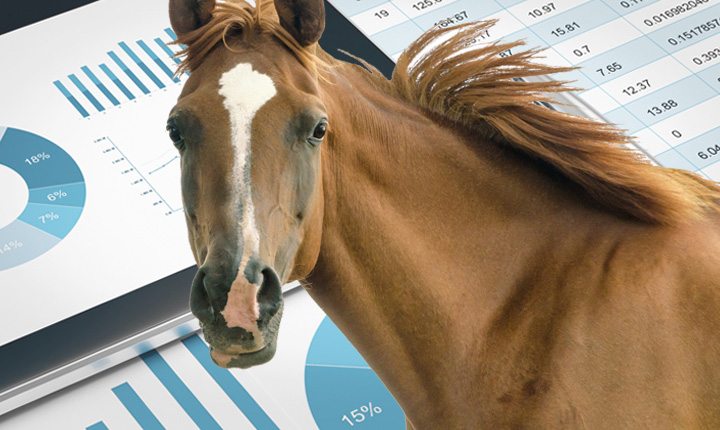 Brown horse standing with financial statements in the background