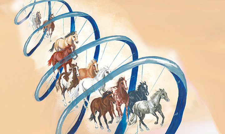 a hand-drawn image of horses running through a blue DNA strand