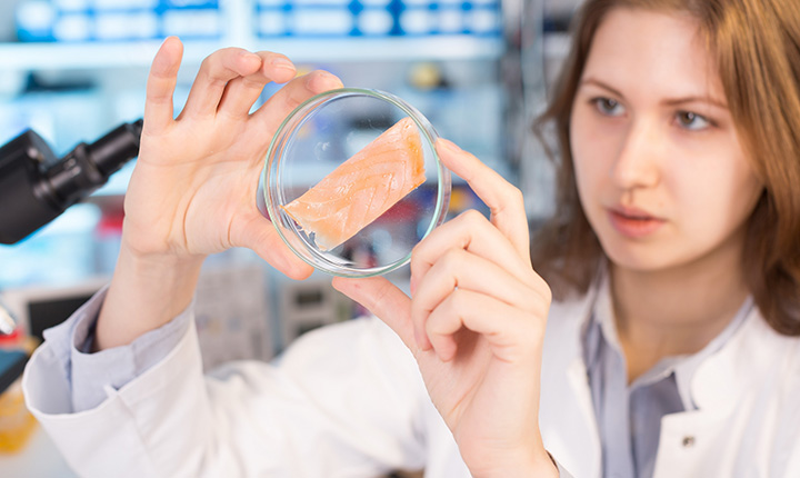 Woman in science lab looking at piece of fish in petri dish