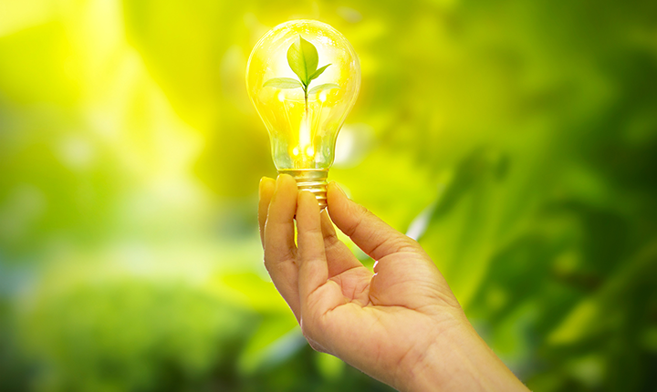 hand holding light bulb with small leaf growing inside shining bright yellow