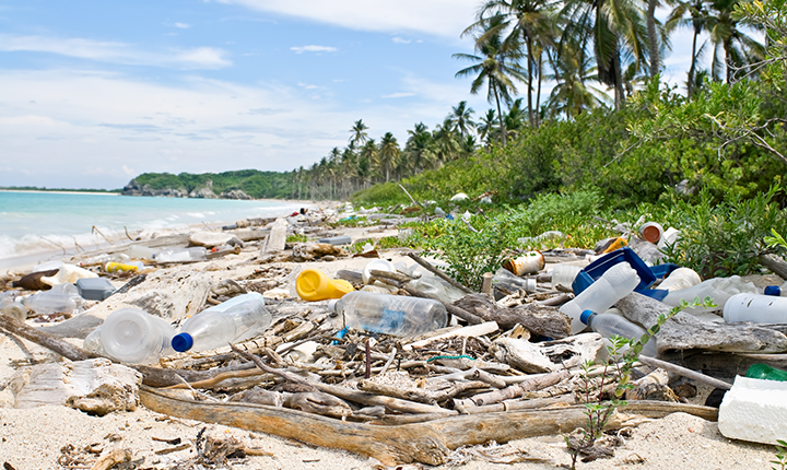 Plastic bottles and garbage washed ashore an otherwise picturesque tropical white sand beach