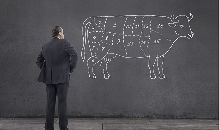 Person studying a chart of beef cuts sketched on wall