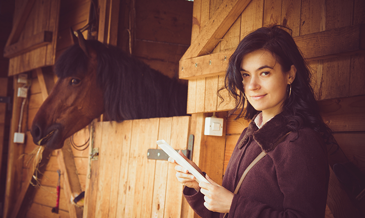 Brown horse looking out of box stall behind woman holding paper and pencil