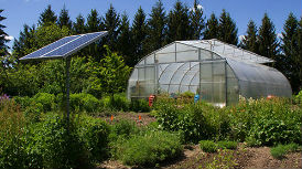 large garden with solar panel in foreground and greenhouse in background